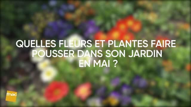 Que faire dans son jardin en mai ?