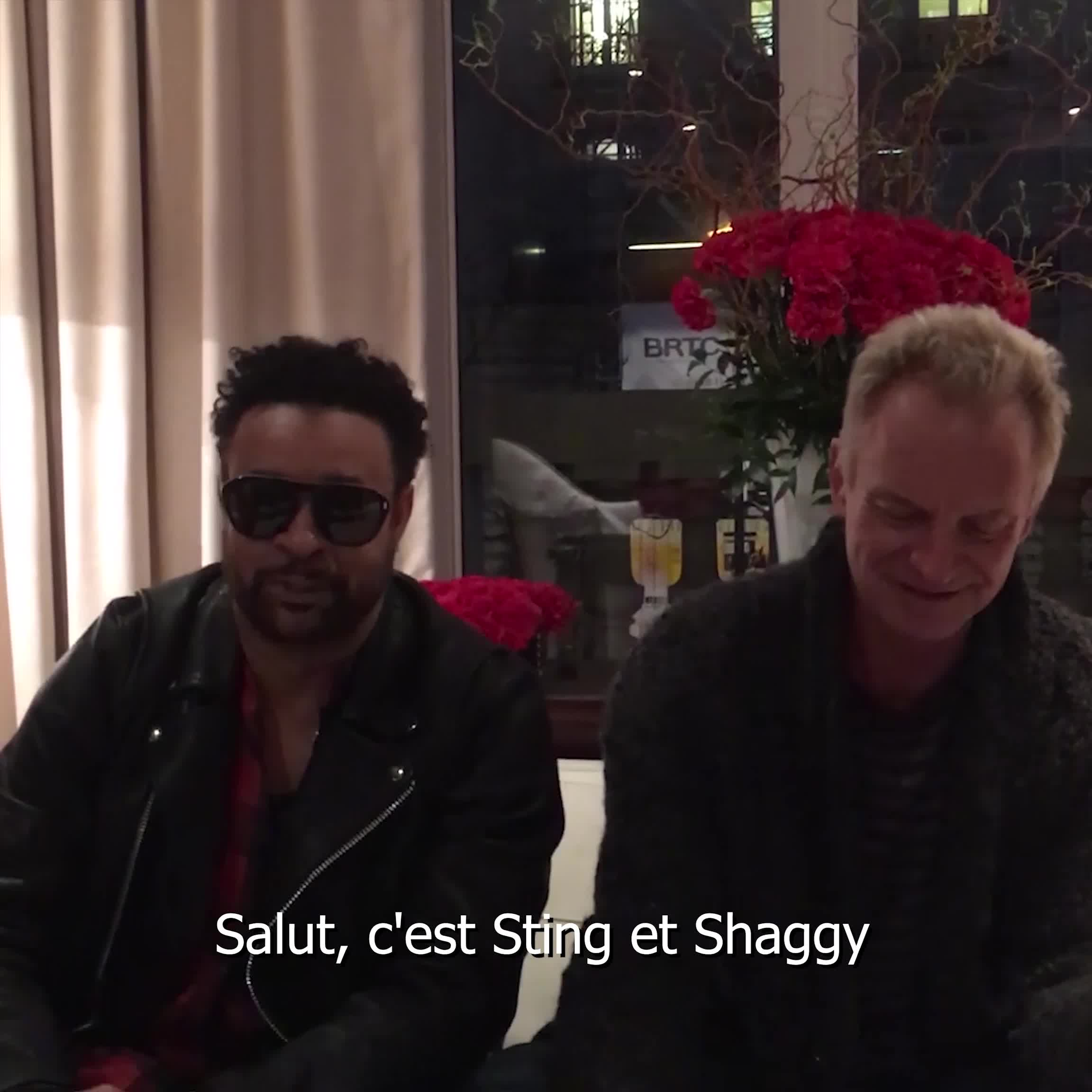 44 876 Deluxe Sting Shaggy: 44/876 - Sting - Shaggy - CD Album - Achat & Prix