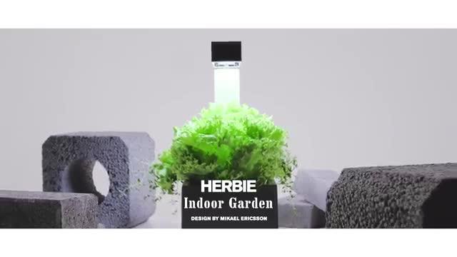 mini potager d 39 int rieur autonome tregren herbie rouge 6 plantes jardini re bac achat. Black Bedroom Furniture Sets. Home Design Ideas